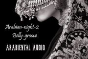 Arabian Nights Volume 2