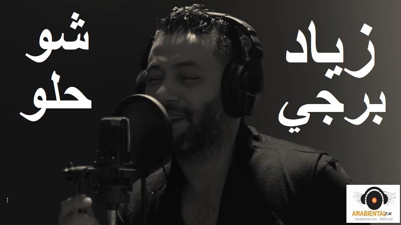 Ziad Bourji Shou Helou زياد برجي شو حلو